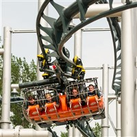 S - Flamingo Land